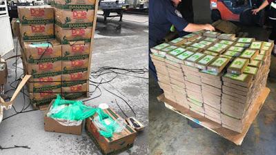 $18 million worth of cocaine found in bananas | Airnewsonline