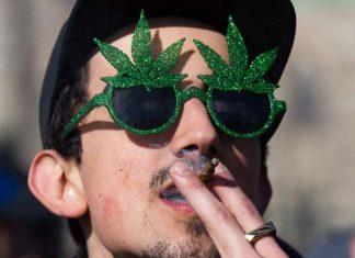 Cannabis Act canada