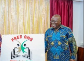 Opposition cant sabotage successful implementation of Free Senior High School Policy Nana Addo