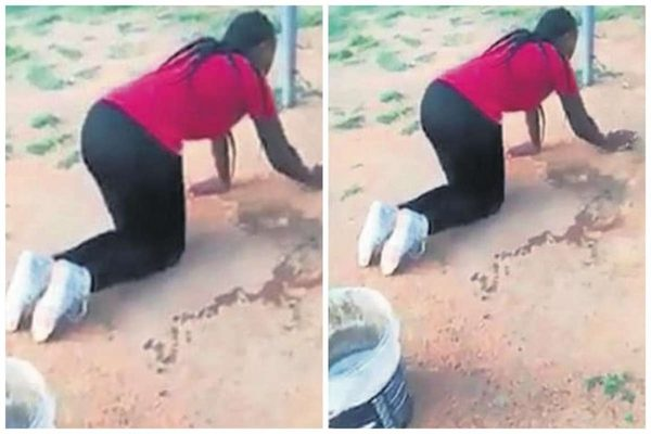 Wife forces husbands love to do chores | Airnewsonline
