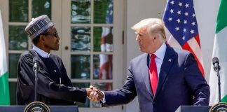 buhari visits trump at white house
