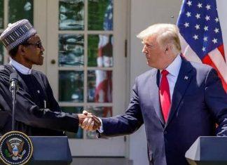 buhari visits trump at white house