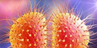 causes of gonorrhoea